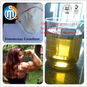 China breaking news about About Testosterone enanthate of  Clinical Pharmacology