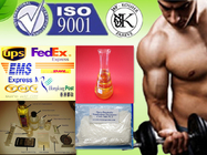 Injectable Anabolic Steroid DECA Durabolin With Muscle Growth Nandrolone Decanoate 360-70-3 for sale
