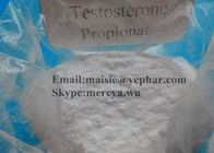 57-85-2 Healthy Oral Anabolic Steriods Testosterone Propionate For Bodybuilders